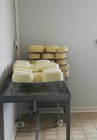 Fromage de brebis bio ferme de la grande houssaie