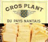 degustation raclette / gros-plant