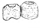 Brebis Fromage d'Auvergne